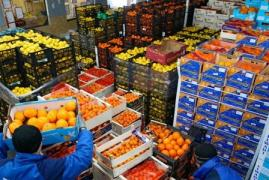 """BF Company"" Wholesale trade in fruits and vegetables"