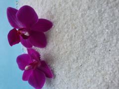 Dolomite limestone flour - MineralProm