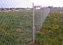 Install fences of mesh netting from 200 rubles per sq m